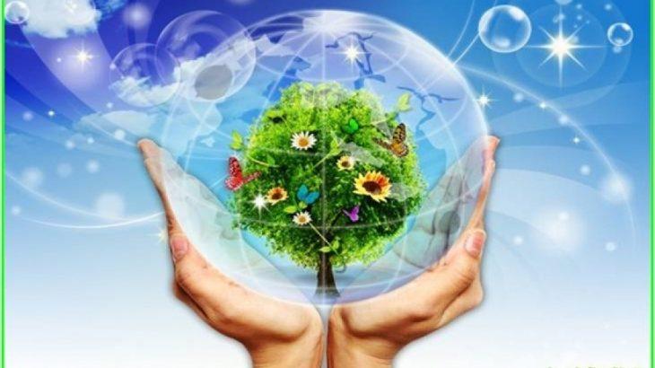 quạt điều hòa giúp tạo bầu không khí tự nhiên